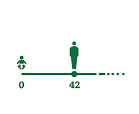 Timeline icon representing average age people begin to experience presbyopia symptoms (42 yrs)